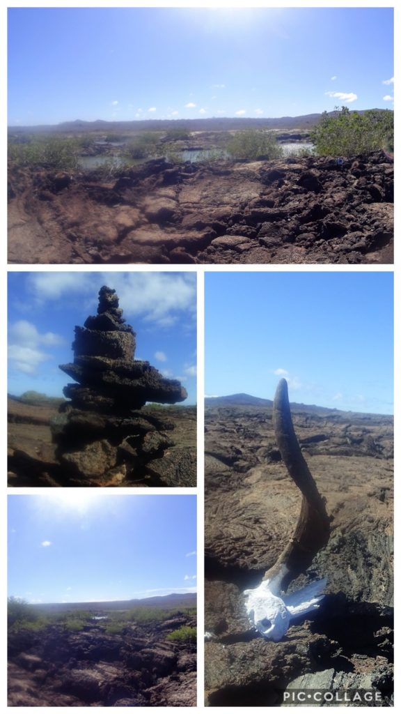 Lava Formations at Tortgua Beach