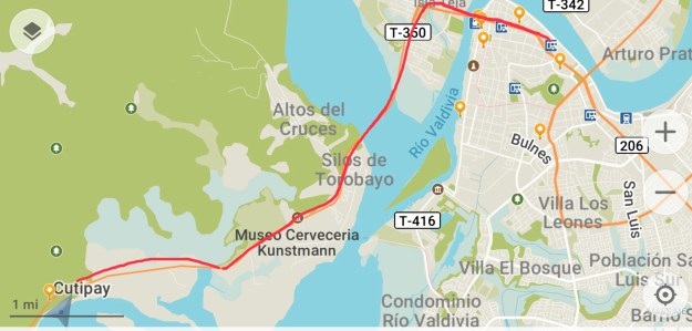 Bus route Marina to Downtown Valdivia