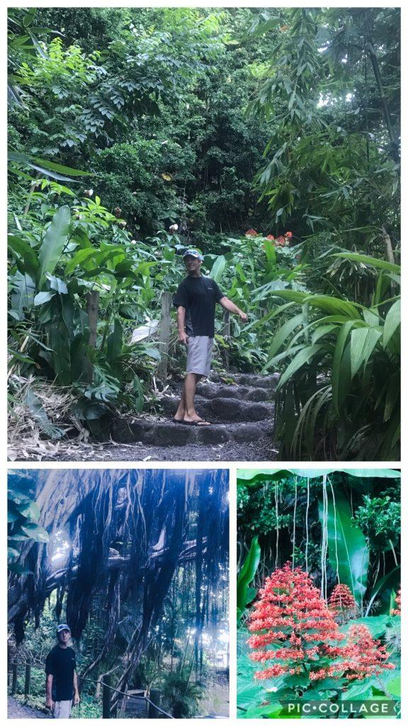 Grotes in Tahiti Walking Path