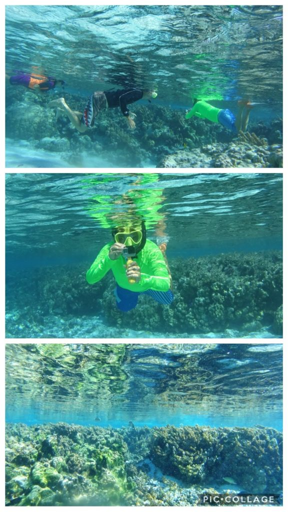 Coral Gardens with Carl
