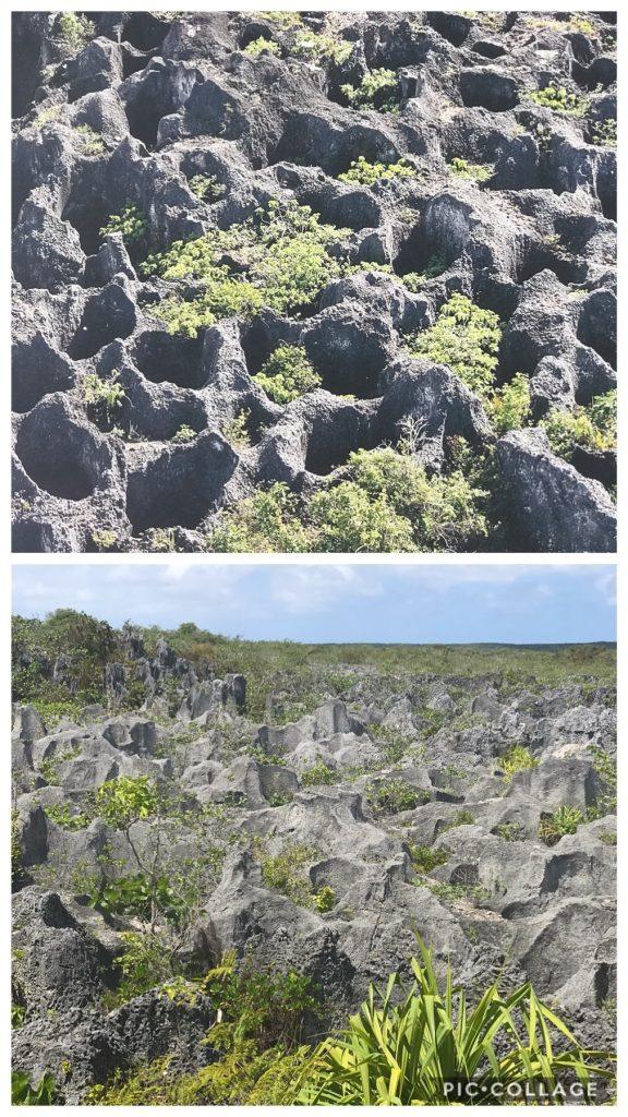 Holes dug by phosphate mining