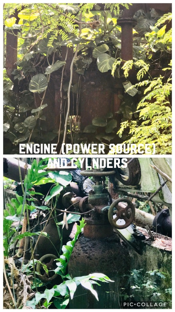 The engine that powered the industrial area