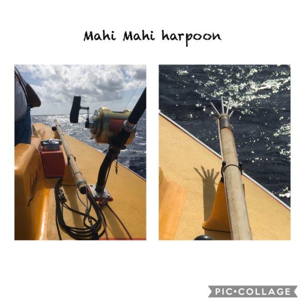 Mahi harpoon
