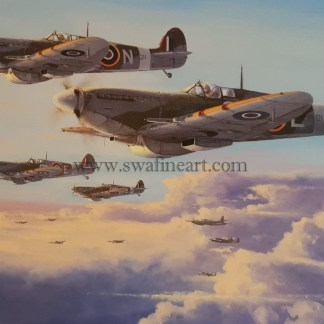 spitfires high patrol Birthday card