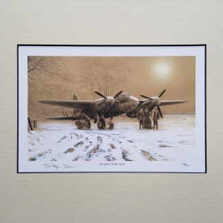 Mosquito in the Snow
