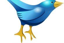 تويتر تتوقع تباطؤ في النمو عام 2021