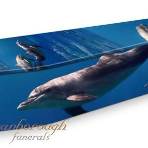 Dolphin Blue Coffin