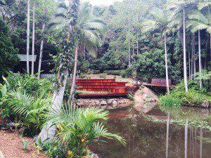 Rainforest Gardens Funeral Service