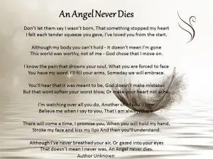 what dies mean
