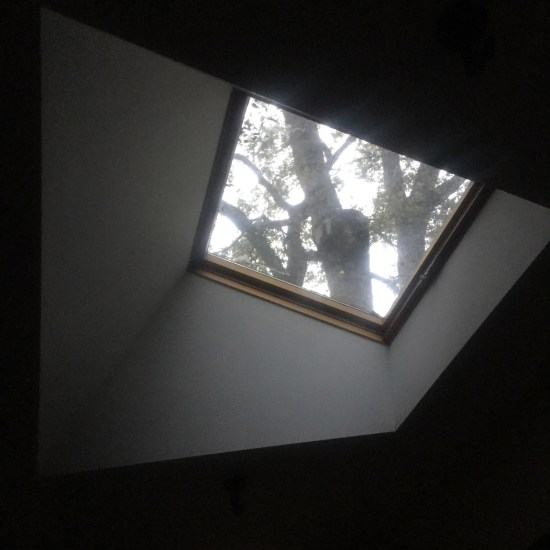 Skylight At Home