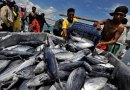 Fisheries Cooperation : Poros China – AS Kuasai Laut dan Ikan Indonesia