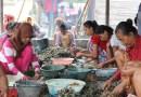 Kinerja Jokowi Urus Pemberdayaan Perempuan Dan Perlindungan Anak