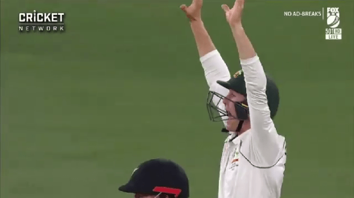Watch Video | Marnus Labuschagne seen appealing hilariously in 1st test vs New Zealand at Perth