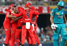 brisbane heat collapse bbl 2020