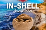 Diamond Foods In Shell Sweepstakes – Win Gift Card