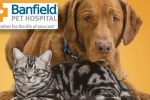 Tell Banfield Pet Hospital Client Experience Survey