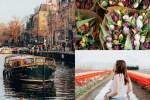 Omaze Amsterdam Tulip Festival Sweepstakes