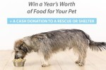 JustFoodForDogs Fresh Food for a Year Sweepstakes