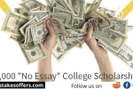 Niche No Essay College Scholarship Sweepstakes