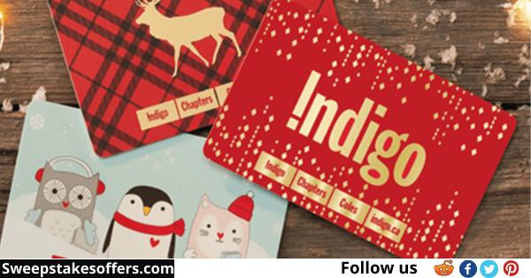 IndigoFeedback.com