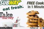 Take Subway Survey