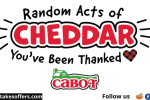 Cabot Cheese Random Acts of Cheddar Giveaway