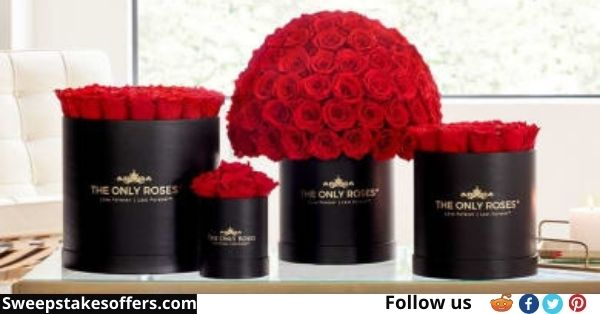 The Only Roses Mother's Day Giveaway