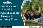 Discovery Cove Photo Contest