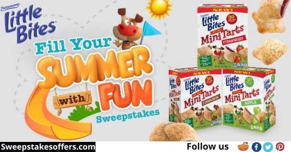 LittleBitesSummerfun.com