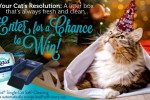 New Year Litter Box Facebook Sweepstakes