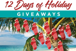Salt Life 12 Days of Holiday Giveaways 2019