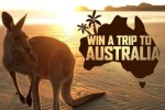Kinder Surprise Animal Adventure Sweepstakes and Instant Win Game