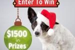 Free Pet Stuff Giveaway