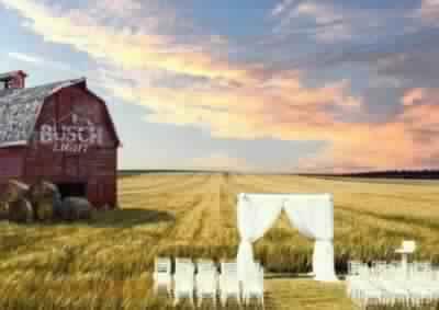Busch Farm Wedding Contest