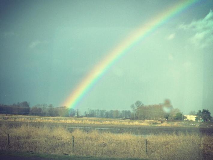 canada_rainbow