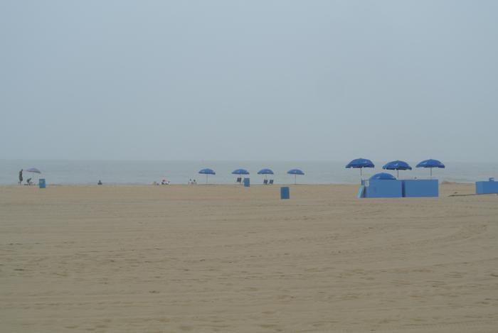 Ocean City 4