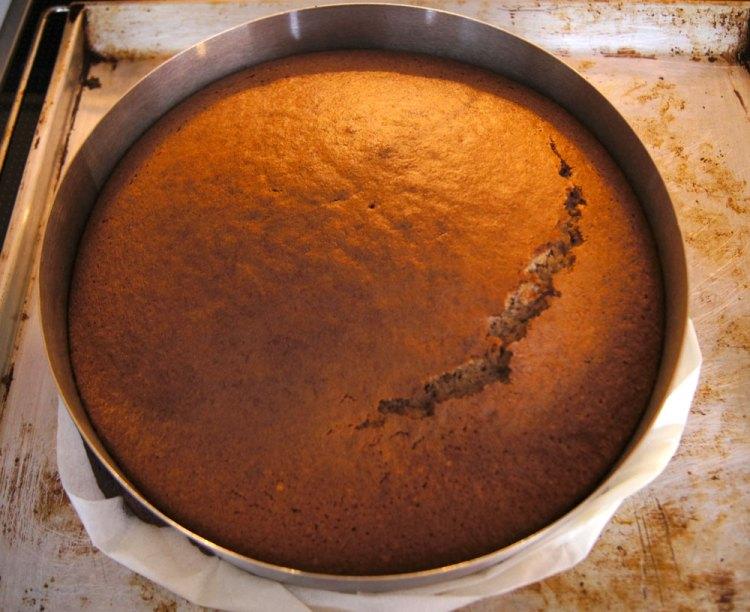 Walnusstorte gebacken