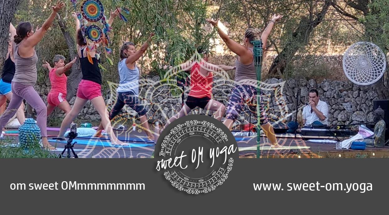 Vinyasa flow and live Hang Meditation Concert