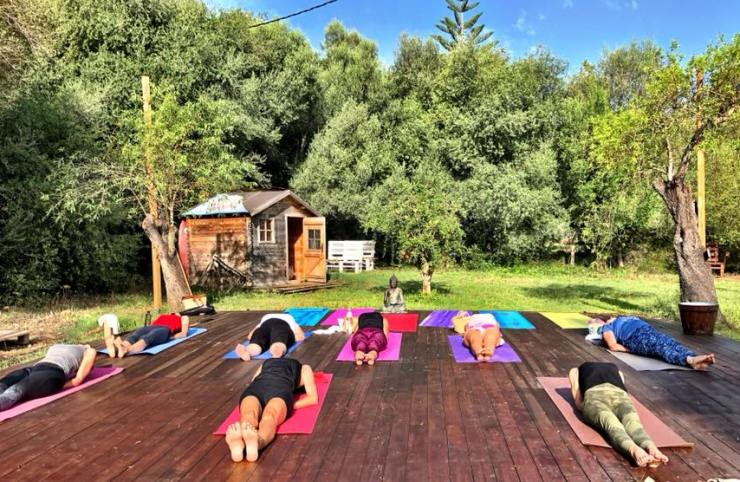 vinyasa power yoga classes