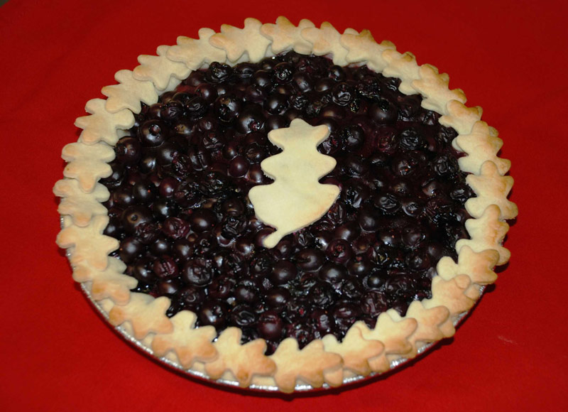 Gluten Free Pie Recipe – Blueberry