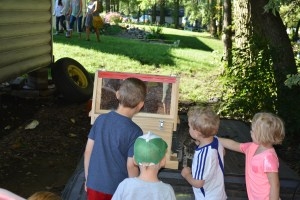 Kids love checking out the observation hive!