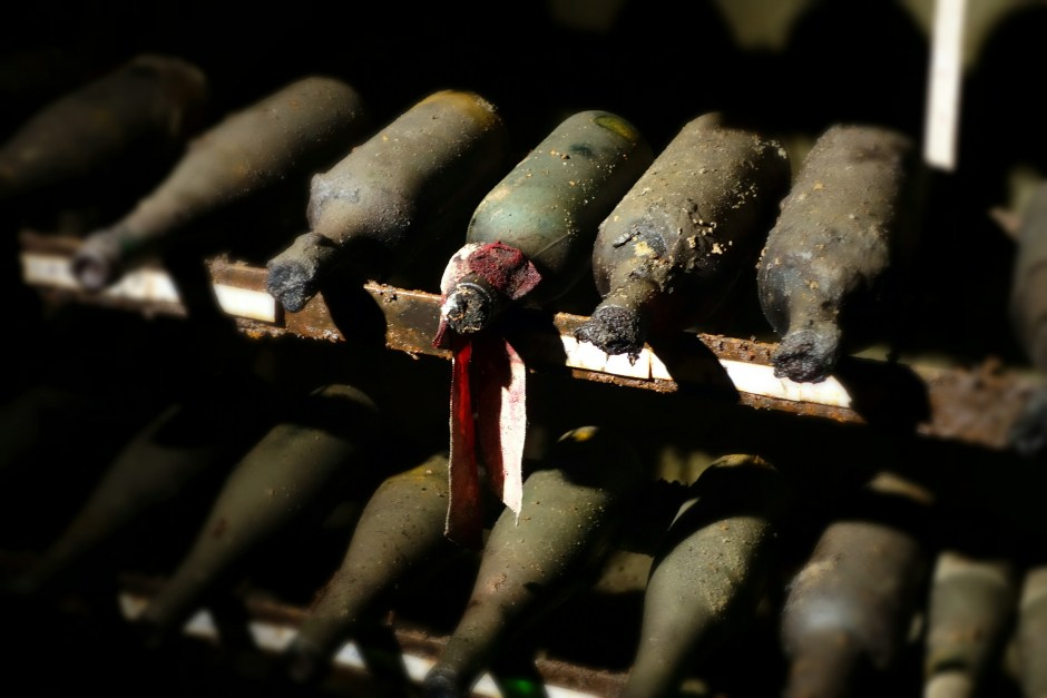 The underground cellar hosts a special wine from 1955, which has been served during the Austrian Independence Treaty