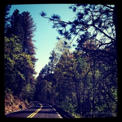 Driving Through Oak Creek Canyon