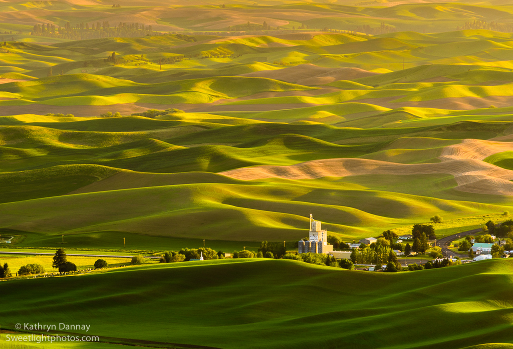 Soft Light on Palouse Hills