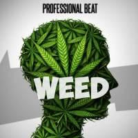 Free Beat : Professional Beat - Weed Beat