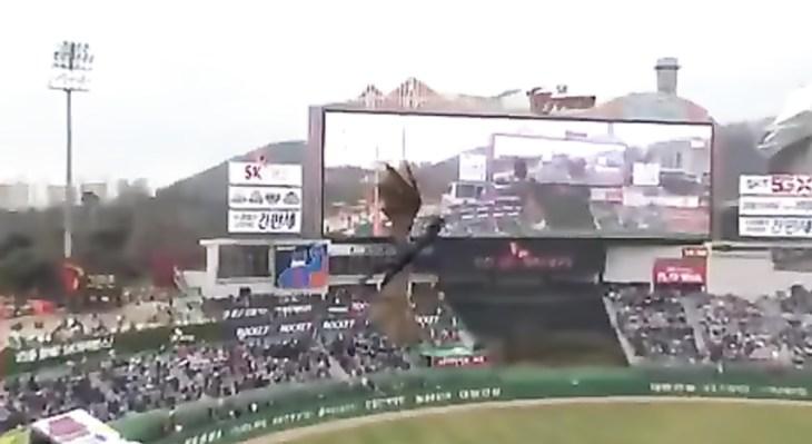 التنين الذى حلق بسماء كوريا الجنوبية