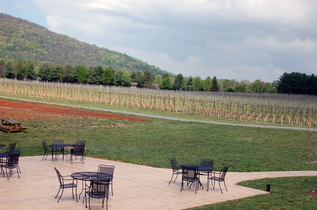 virginia winery