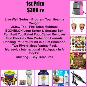 1st prize