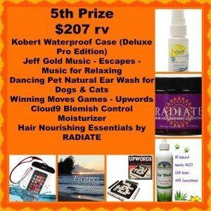 5th prize