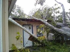 Tree Lands On Parent's House! Don't Be Caught Without It - Protect Yourself With Homeowners Insurance